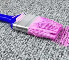 pink paint on carpet brush